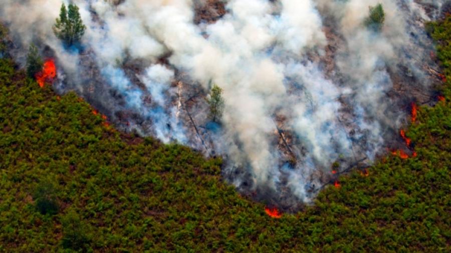 Darurat Asap: Donasi Untuk Riau dan Sekitarnya